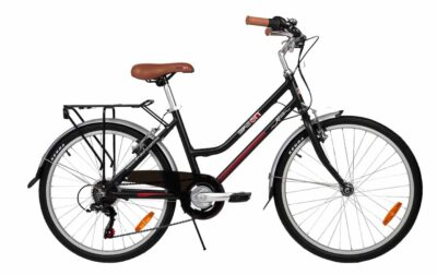 Bicicleta Convencional Modelo Agua