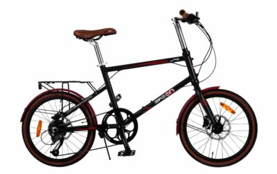 Bicicleta Convencional Modelo Fuego